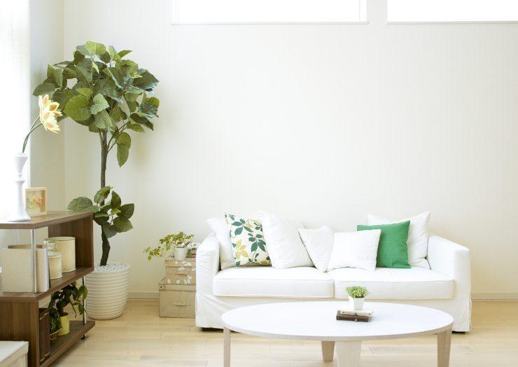 Ein schickes Sofa lädt zum Entspannen ein. (Bild: © Blinka - shutterstock.com)