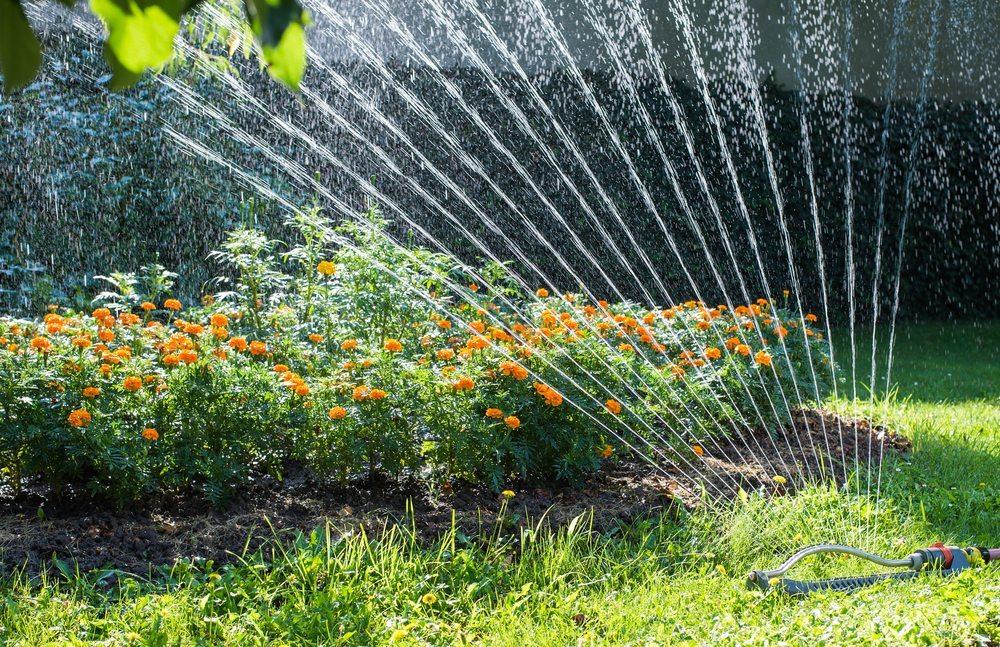 Profi-Bewässerung für draussen. (Bild: Fotokostic / Shutterstock.com)