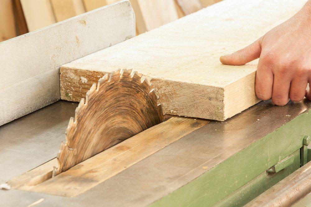 Seit tausenden von Jahren begleitet Holz die Entwicklung der Menschheit. (Bild: Slavica Stajic / Shutterstock.com)