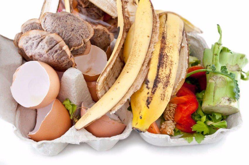 Was genau darf im Garten kompostiert werden? (Bild: © Sam72 - shutterstock.com)
