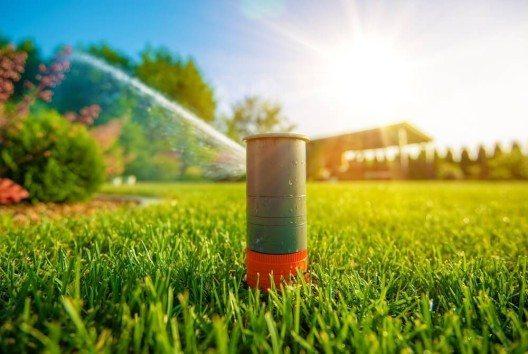 Für Hobbygärtner und Menschen ohne grünen Daumen gibt es einen Pflanzen-Sensor für eine perfekte, interaktive Pflanzenpflege. (Bild: © welcomia - shutterstock.com)