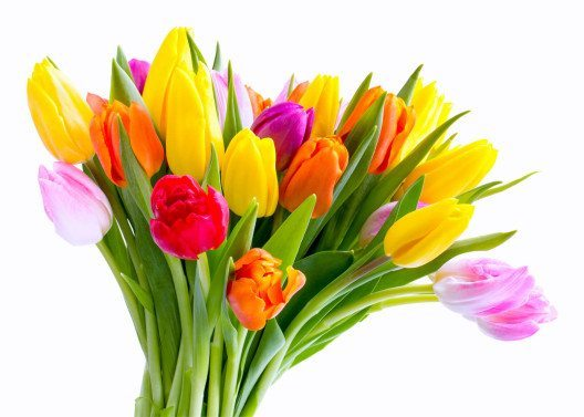 Freude an einem bunten Frühlingsstrauss (Bild: © eyetronic - fotolia.com)