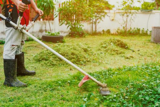 Rasenpflege - mit einer Motorsense kein Problem! (Bild: thanatphoto - shutterstock.com)